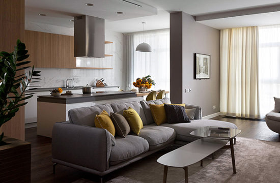 Особенности планировки кухни, совмещенной с гостиной